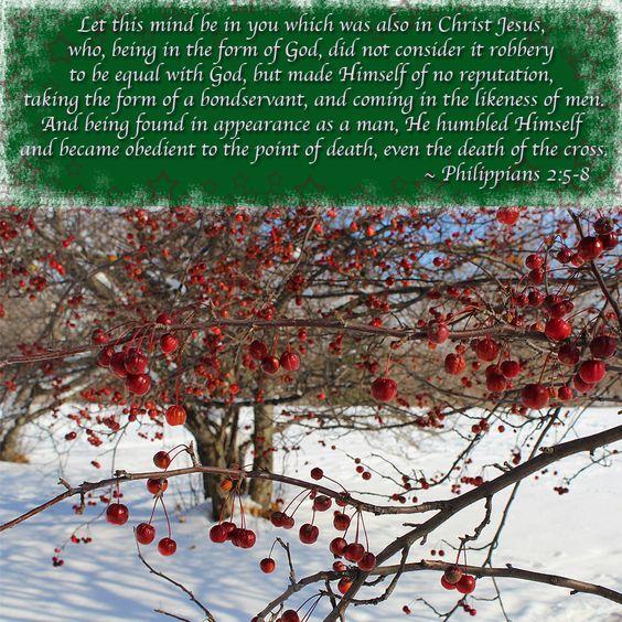 Philippians 2: 5-8