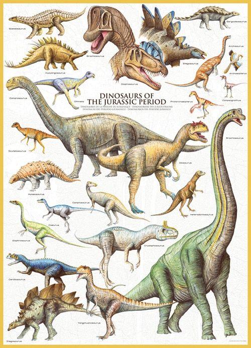Sebra Dinosaur Poster Dinosaur Posters Dinosaur Boy Room Poster
