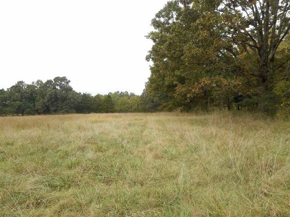 27 acres of pasture land ready for your cattle or horses. This prime location could also be subdivided into smaller parcels with highway frontage. County water and electric available in Doniphan MO