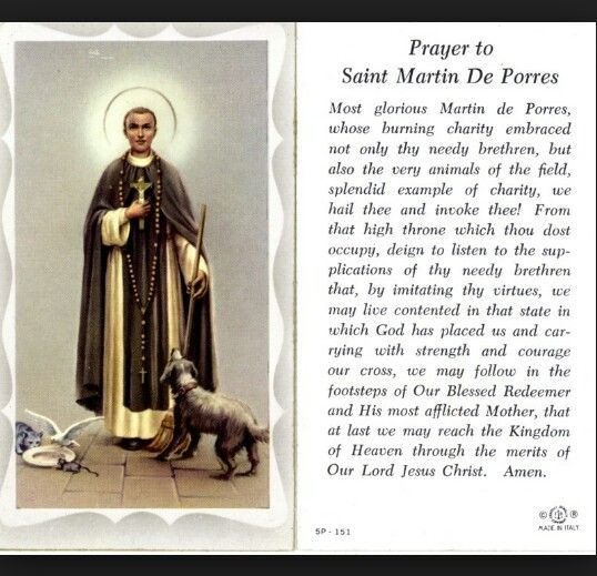St.Martin De Porres patron saint of hairdressers, barbers, interracial harmony feast day November 2nd