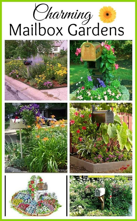 Mailbox garden curb appeal and gardens on pinterest for Garden design ideas curb appeal