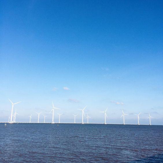 Những cánh quạt trên nền trời xanh thẳm Ảnh: Long Nguyễn
