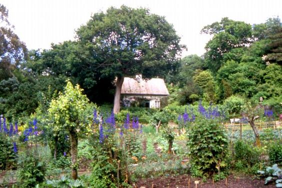 The garden has a cottage