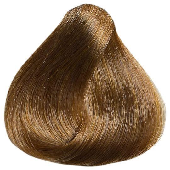 Naturcolor 7m Cinnamon Blonde Beans Beauty Store Salon Permanent Hair Color Blonde Beard No Mustache