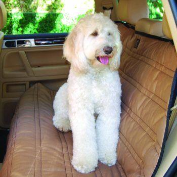 couverture de protection pour siège et coffre pour chien