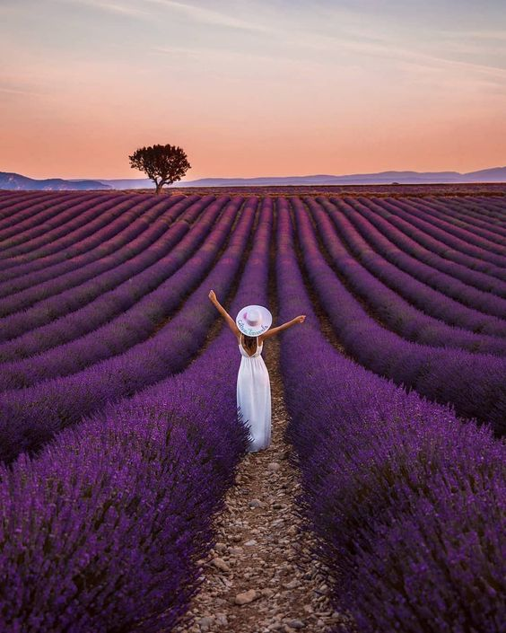 Provence, France​- 14 most stunning places to travel with your Significant Other - Todaywedate.com