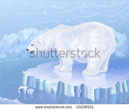 ocean and bear - Google 搜尋