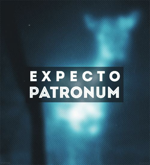 Day 10. Fav spell Expecto Patronum What do you think would be your patronus? ( like your spirit animal)