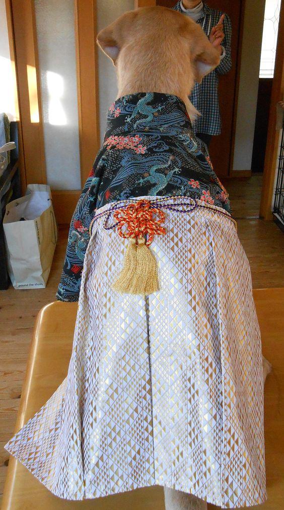 大型犬の袴製作 丘さんの作品