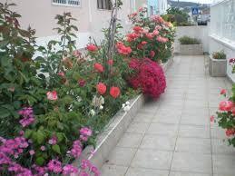 Resultado de imagem para jardins floridos pequenos