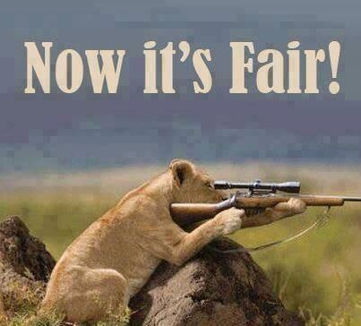 Ban trophy hunting! It is not a 'sport' either