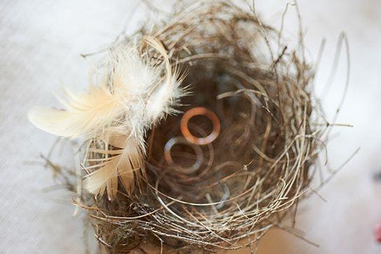 Bird's nest ring holder for an Australian Wedding