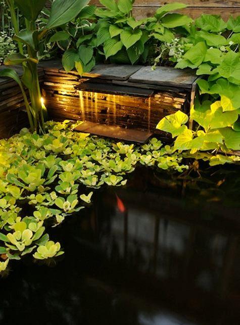 Fantastic pond waterfall for the home pinterest for Koi pond lights