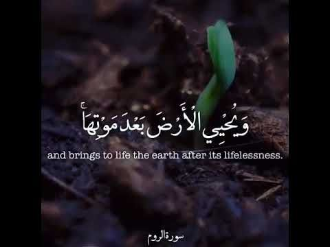 الإنجليزية الممتعة آيات من القرآن الكريم مترجمة للغة الإنجليزية Youtube Life Earth Islam