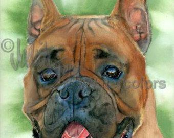 Sammy Smile ist eine offene Edition Giclee Kunstdruck von mit ein Samojede Haustier Hund Aquarell. Die Brut nimmt seinen Namen von der Samojedische