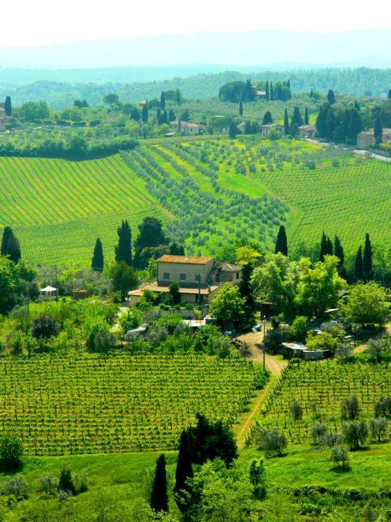 San Gimignano, Italy, by Gabi Banut.