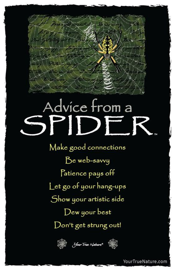 Advice from a Spider Frameable Art Card – Your True Nature, Inc.