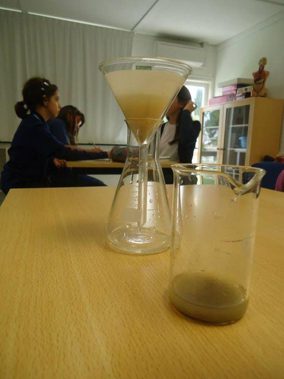 Ciências Experimentais  5º ano