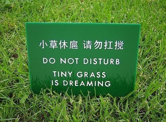 Top 15 Chinese Translation Fails (15 Pictures)