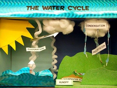 SCIENCE: Water cycle diorama My older student just got a project for water cycle week.