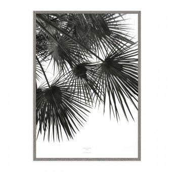 na.hili endless summer WIND Artprint A3 Palmen Poster