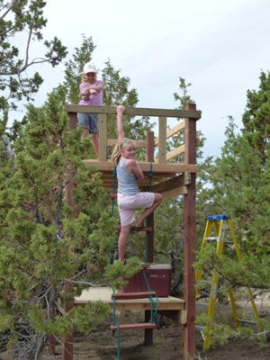 An interesting look at our fascination with tree houses in High Country News.