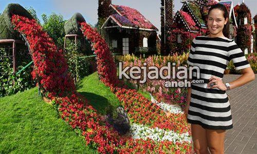 Gambar Bunga Dan Taman 7 Taman Bunga Terindah Bagaikan Di Surga Kejadian Aneh Tapi Nyata 50 Contoh Gambar Lukisan Bunga Sederhana Y Gambar Bunga Bunga Gambar