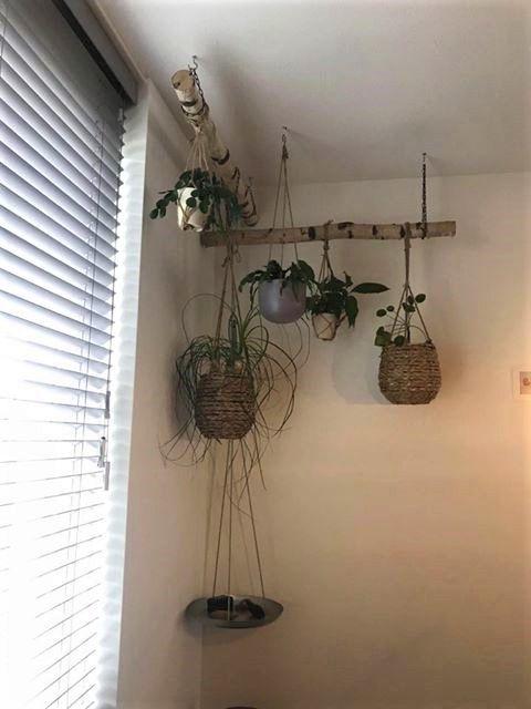 Planten Hanger Takken Decor Plantenhanger Macrame Plantenhanger