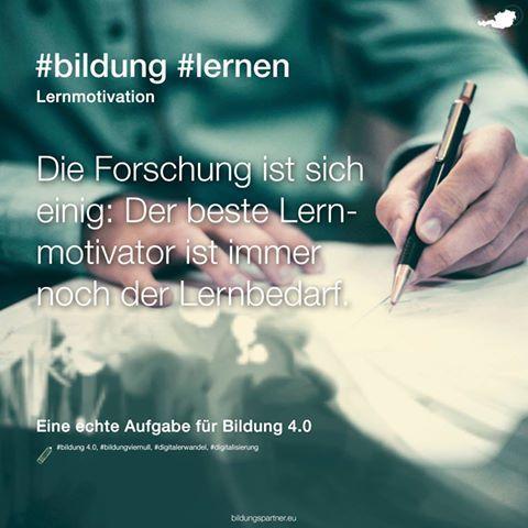 """Das Thema """"Lernmotivation"""" ist ein echter Dauerbrenner: Was wird da nicht alles dazu geschrieben und gesagt!? Wir halten uns dabei an Folgendes ;-)  #bildung #motivation #lernen #pädagogik #bildungspartner"""