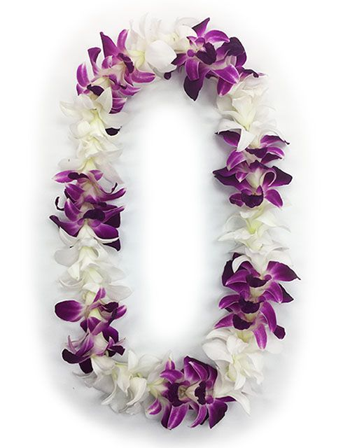 Single Strand Orchid Lei Purple And White Orchid Lei Orchids Hawaiian Lei