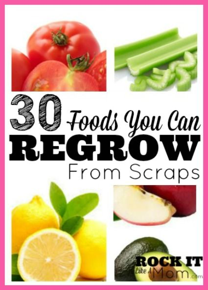 There are a ton of foods that, by following a few simple steps, can actually be regrown from the leftovers you usually throw away!  I've done a few of these, such as green onions, tomatoes, and we actually have an avocado pit growing on our counter as I type this!