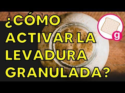 Cómo Activar Levadura Seca Activa ó Instantánea Galería De Recetas Youtube Levadura Recetas Seco