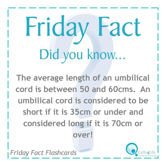Friday Fact: The average length of an umbilical cord is between 50 and 60cm.  An umbilical cord is considered to be short if it is 35cm or under and considered long if it is 70cm over!