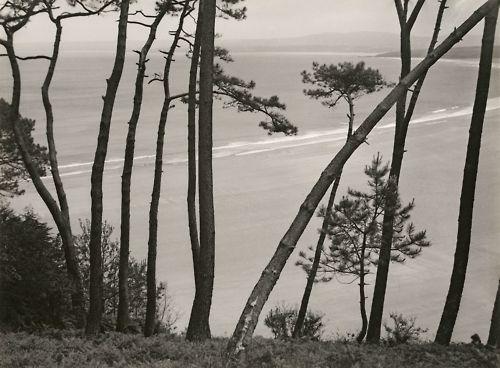 Breton Seashore  Photo: Albert Renger-Patzsch