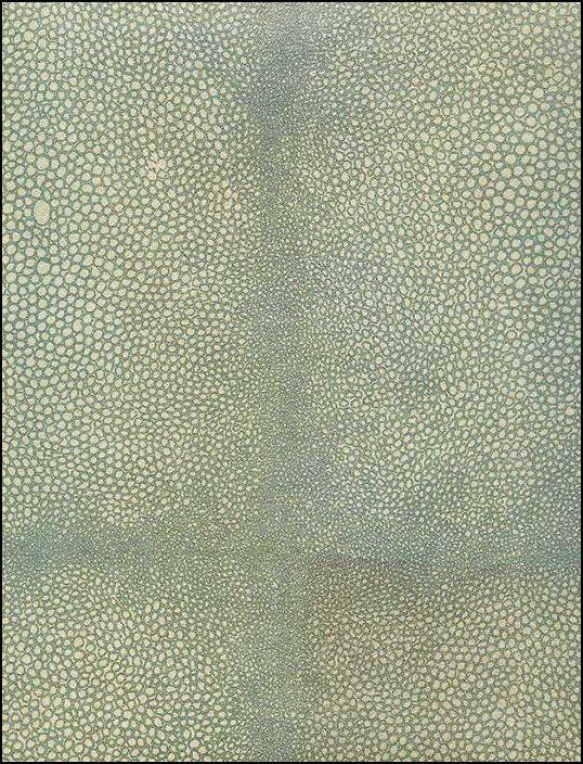 Anya Larkin, Shagreen Celadon wallpaper back of shelves or cabinet?
