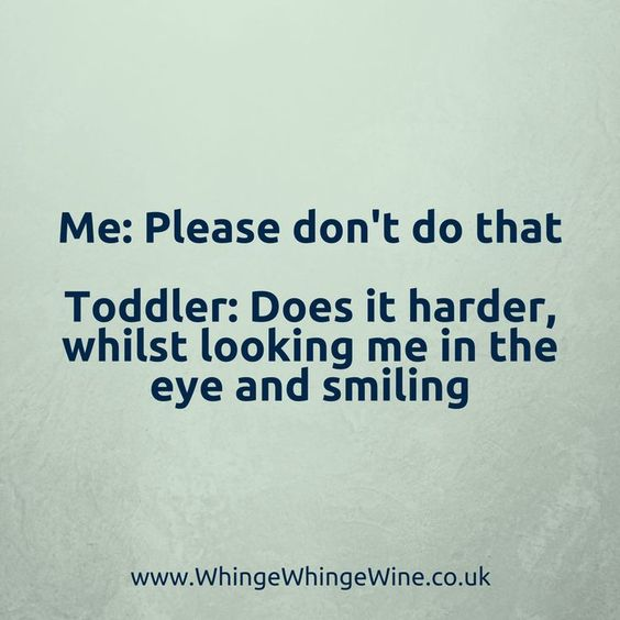 Me: Please don't do that My toddler: Does it harder, whilst looking me in the eye and smiling #parenting #momlife #mumlife #memes #parentingmemes #funny #lol #mom #toddlers