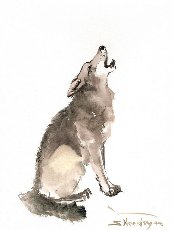 Watercolor painting, Wolves and Watercolors on Pinterest