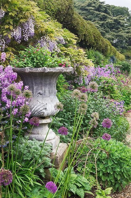 House gardens herbaceous border and england on pinterest for Garden trees england