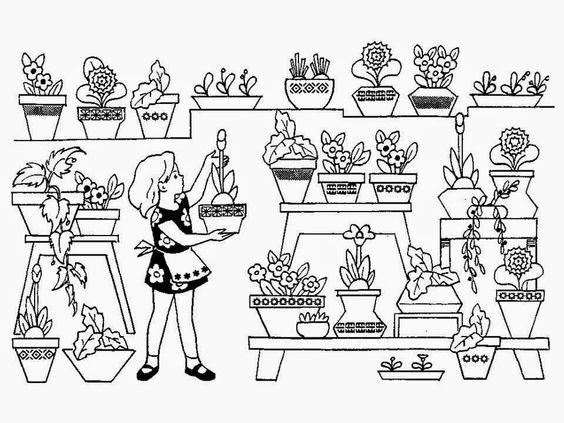 Цветы. Луговые, садовые, комнатные. – Совёнок