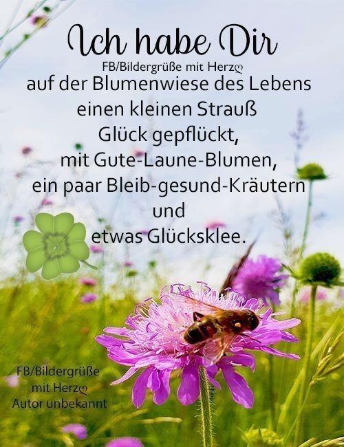 The Post Appeared First On Flur Ideen Gluckliche Spruche