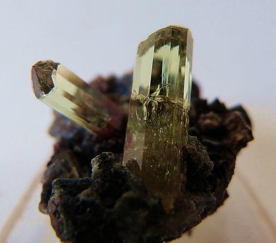 APATITE (Calcium Phosphate) crystal from the classic location at Cerro del Mercado, Durango,