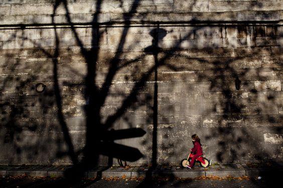 Explore Fabio (Fagu) Costa's photos on Flickr. Fabio (Fagu) Costa has uploaded 1808 photos to Flickr.