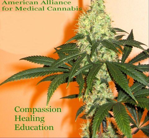 "Medical marijuana (cannabis) - American Alliance for Medical Cannabis: by Dr. Bearman, ""What dose of cannabis is right for you?"" articles at http://www.letfreedomgrow.com/newsletter/2011/1/"