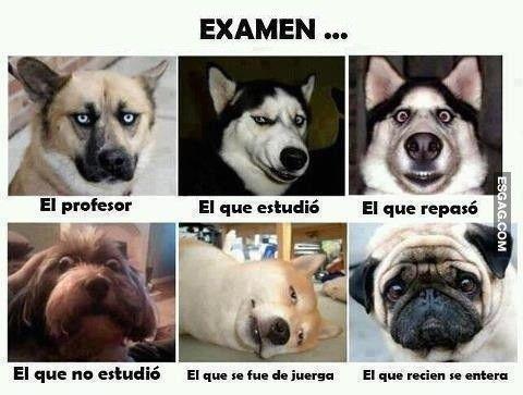 El día del examen...