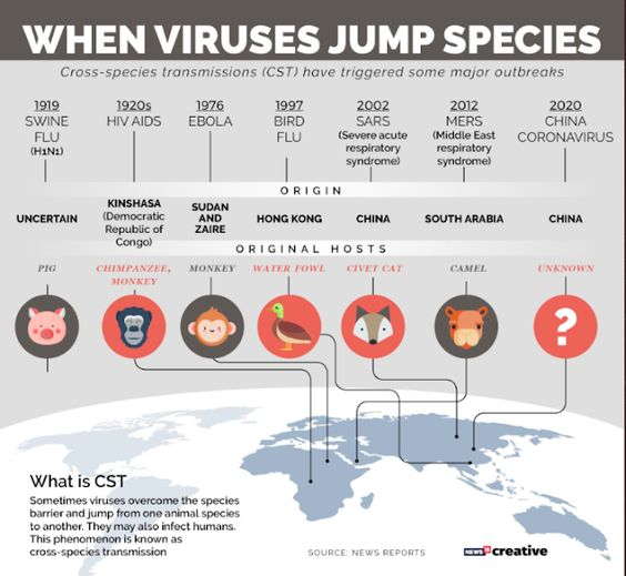bits-en-pieces: HOW TO IDENTIFY SYMPTOMS OF NOVEL CORONA VIRUS AND HOW IT SPREADS