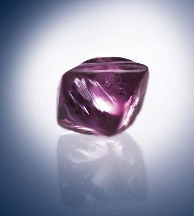 Un deslumbrante despliegue de Beyond raras Diamantes Argyle Pink en el invernadero del palacio, el palacio de Kensington | Sotheby