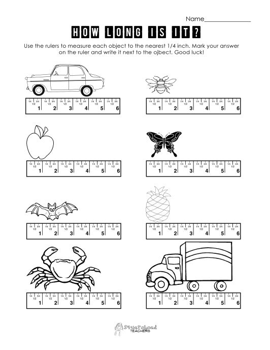 Fractions On A Ruler Worksheet & algebra and geometry assessment