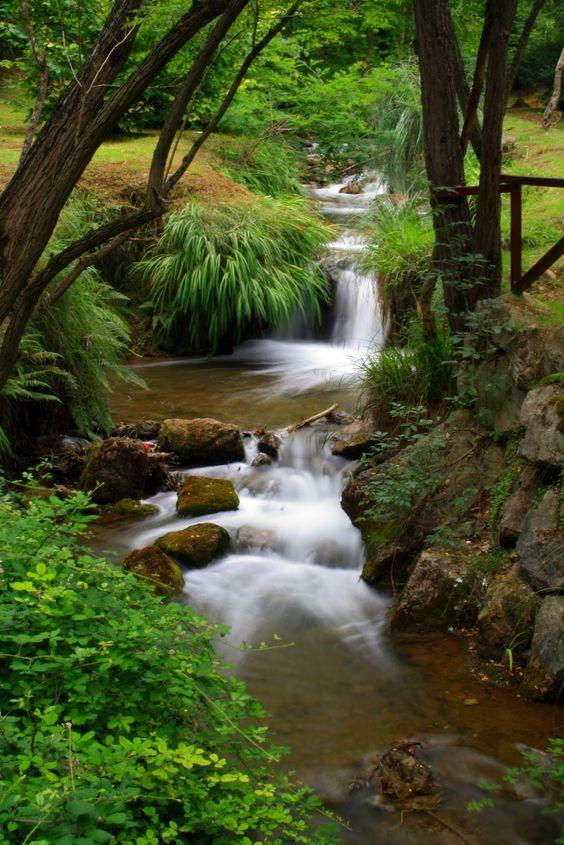 Parque de La Viesca #Cantabria #Spain