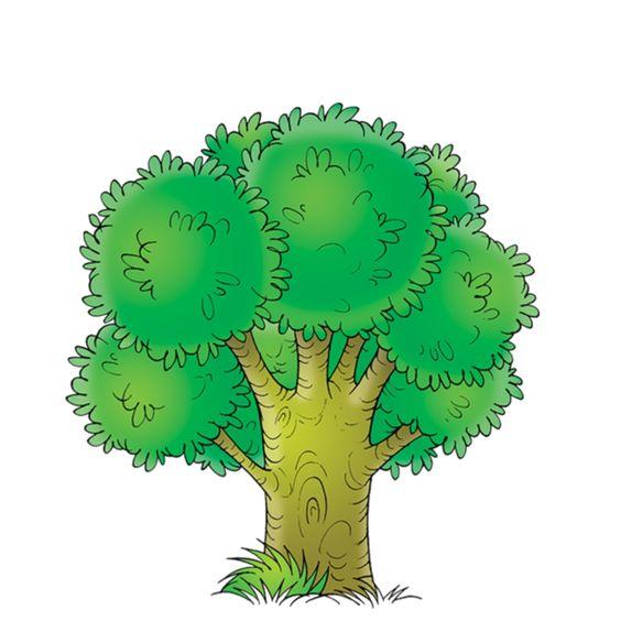 ●••°‿✿⁀ Trees ‿✿⁀°••●: