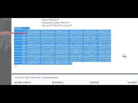 tutorial para el diseño de primers genbank